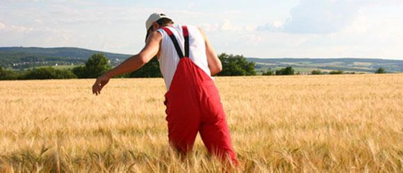Rolnik w urzędzie pracy